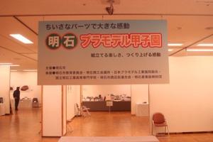 2010_mini